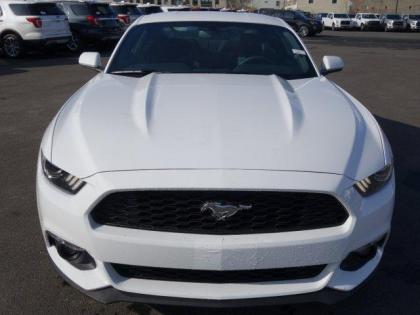 2017 FORD MUSTANG ECOBOOST - WHITE ON BLACK 2