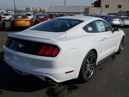 2017 FORD MUSTANG ECOBOOST - WHITE ON BLACK 3